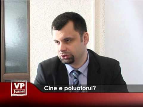 Cine e poluatorul?