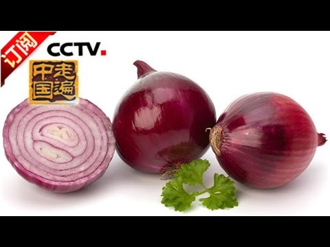 《走遍中国》 20160830 走向世界的洋葱王 | CCTV-4