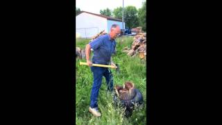 Ingenious Wood Chopping Trick Using Tire