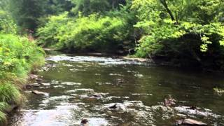 Lock Haven (PA) United States  city photos : #1 - Kettle Creek PA - First Stream that I fished of the top 100