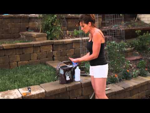 Tomato Fertilizing Tips - Quick, Simple, Inexpensive