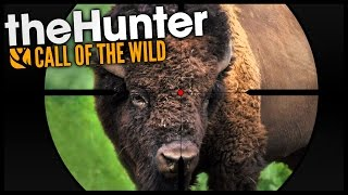 The Hunter: Call Of The Wild - BISON HUNTING! - Let's Play The Hunter Call Of The Wild Gameplay