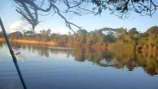 Pescaria No Araguaia