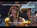 Annual Carnaval San Francisco Grand Parade, San Francisco, CA, USA - Picture