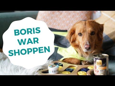 HUNDE HAUL mit Boris ❘ Lilies Diary ❘ #sponsored by Fressnapf