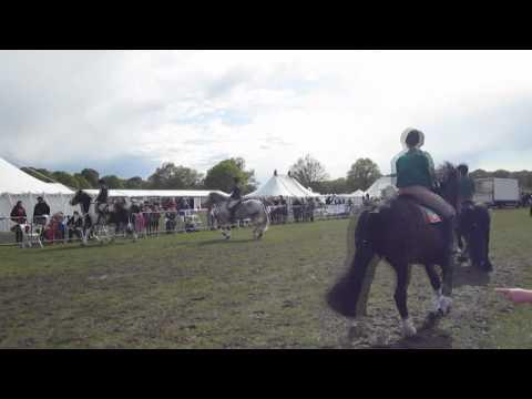 Horse Rangers Musical Ride in Richmond Park