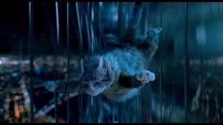 Nonton Nine Lives   Mr Fuzzypants  Film Subtitle Indonesia Streaming Movie Download