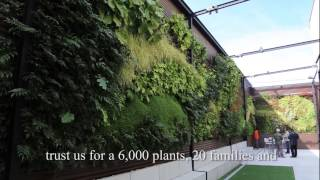 Vertical gardens around the world - Alicante (part 2)