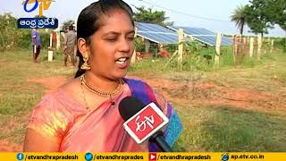 Video An Young Couple Leaves Software Jobs | Now Showing Natural Farming A Profitable One MP3, 3GP, MP4, WEBM, AVI, FLV Desember 2018