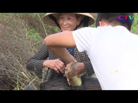 Cam Chính khôi phục Ngày hội Cá Bàu làng Mai Lộc