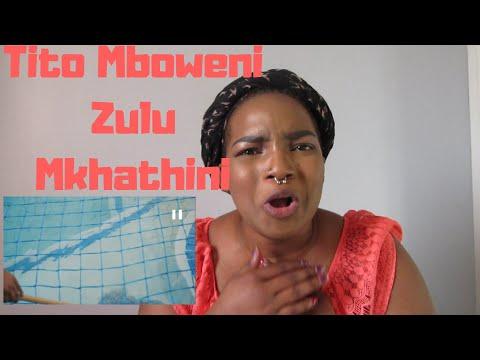 Tito Mboweni ft Zulu Mkhathini (reaction)
