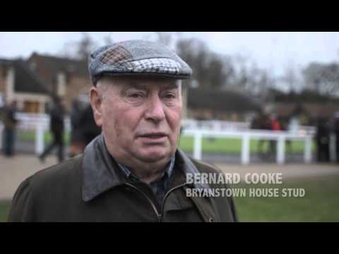 Tattersalls December Foal Sale 2015 Day 5 Video Review