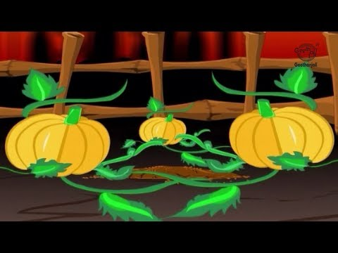 Kids Stories - Indian Folk Tales - The Three Magic Pumpkins