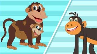 Kurangu Kottam - Monkey - Children Tamil Nursery Rhymes Chellame Chellam Volume  6