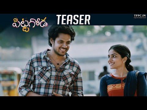 Pittagoda Movie Trailer - Vishwadev, Punarnavi Bhupalam