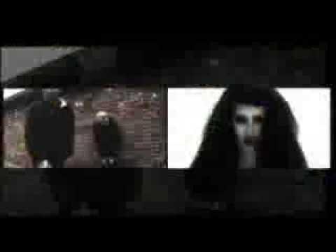 Youtube Video cgB4GiplByU