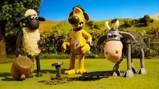 Shaun The Sheep S04e29   The Stare