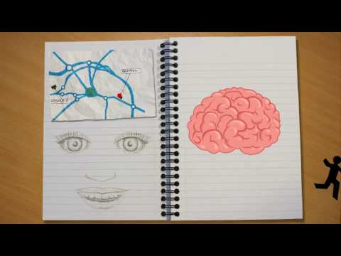 learning - One of the 9 films available in Successful Learners How does my brain work? What happens in my brain when Im learning? What stops my brain from learning? Wha...