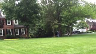Tree falling direction w rope and axe