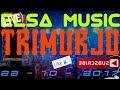 ELSA MUSIC LIVE TRIMURJO (5)