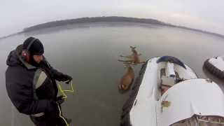 Rescue Two Helpless Deer Trapped On An Icy Lake