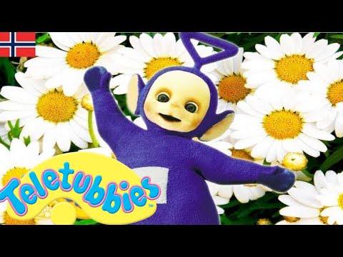 Teletubbiene på norsk - hele episoden kompilering - 1 time #29 | Tegneserier for barn