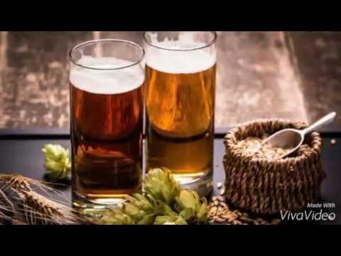Quattroventi: il gusto della birra artigianale VIDEO   Alba Adriatica