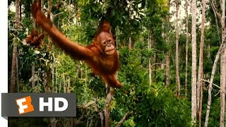Nonton Born to Be Wild Official Trailer #1 - (2011) HD Film Subtitle Indonesia Streaming Movie Download