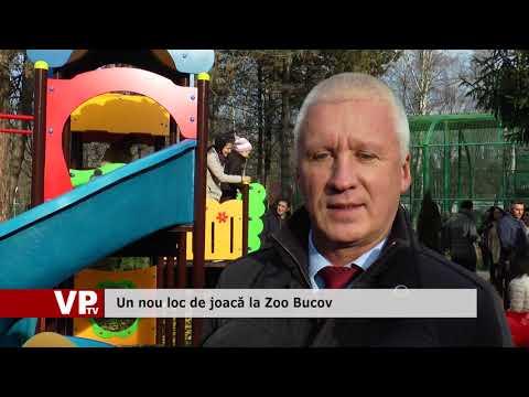Un nou loc de joacă la Zoo Bucov