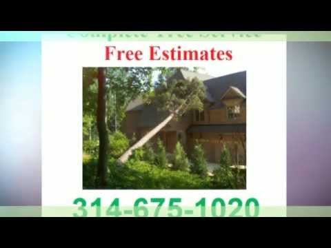 (314) 675-1020 Free Estimates Tree Service Webster Groves MO 63119