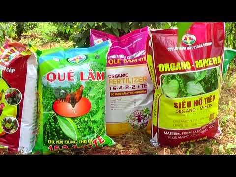 Quế Lâm với vùng nguyên liệu Tiêu và Bơ hữu cơ