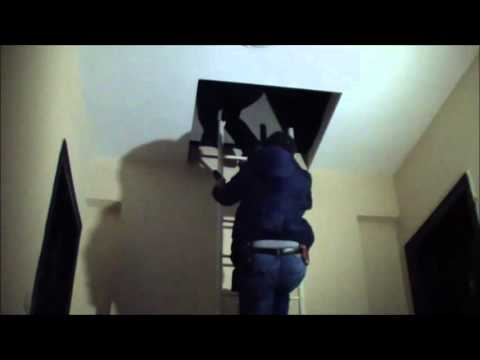 Milas'ta evde hırsız olduğu ihbarı polisi harekete geçirdi