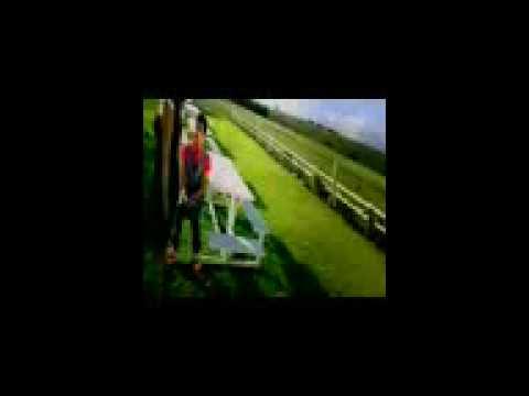 Video Rakesh Soni .........Behka Ghajini download in MP3, 3GP, MP4, WEBM, AVI, FLV January 2017