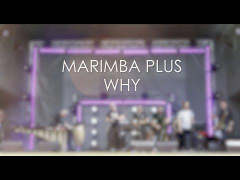 """Marimba Plus - """"WHY"""""""