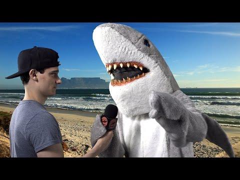 SHARK ATTACKS SURFER ON CAMERA