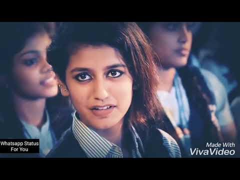 Video Priya varrier Teri aakhya ka yo kajal download in MP3, 3GP, MP4, WEBM, AVI, FLV January 2017