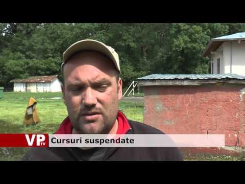 Cursuri suspendate