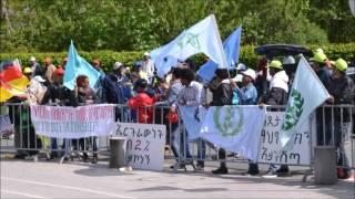 Wetzlar Germany  city photo : 25 Years Sovereignity of Eritrea - Anti PFDJ Demo in Wetzlar Germany