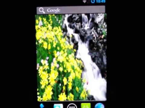 Video of Spring Live Wallpaper