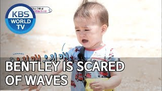 Video Bentley is scared of waves [The Return of Superman/2019.07.07] MP3, 3GP, MP4, WEBM, AVI, FLV Juli 2019