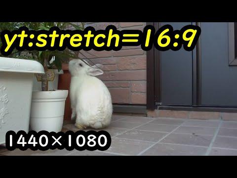 yt:stretch=4:3 - Gigashotで撮影したフルHD(1920×1080)を、Windows Vistaに付属するWindows ムービー メーカーで、Windows Media HD 1080p(1440×1080)にエンコード。それをYouTubeにアップロードする際に、タグ ...