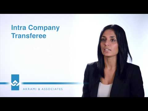 Intra Company Transferee Video