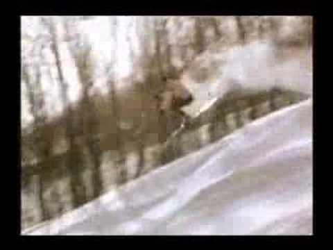 Enzyte - Smiling Bob Skiing