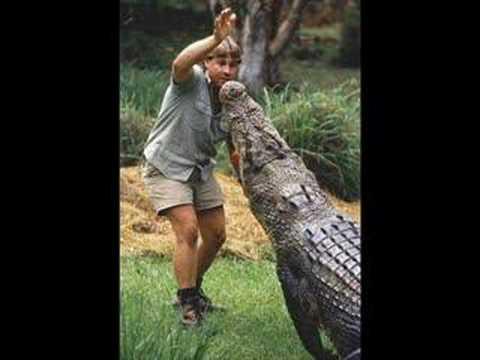 Tributo a Steve Irwin... El Cazador De Cocodrilos