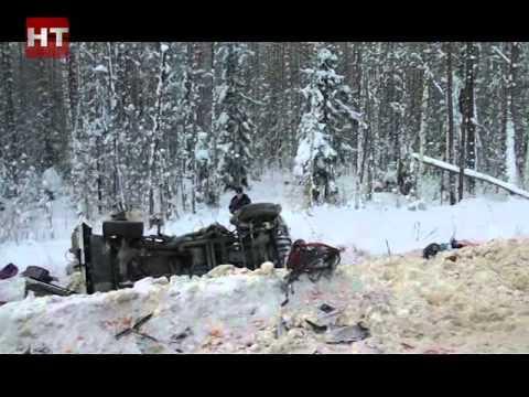 Четыре человека погибли в результате серьезного ДТП в Крестецком районе области