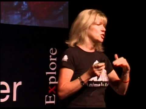 TEDxPearlRiver - Jill Robinson<br>Welfare of Animals