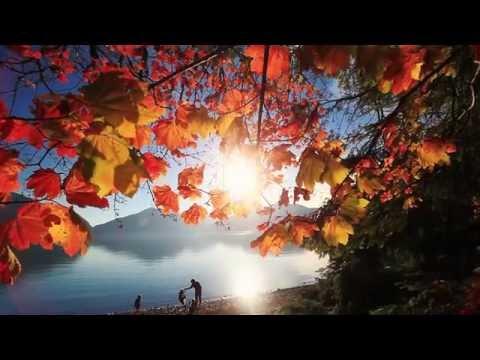 Find Nature #JustUpTheRoad in #HarrisonHotSprings