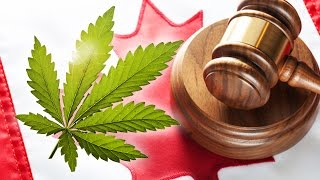 Marijuana Laws in Canada: What Do They Mean? by Pot TV
