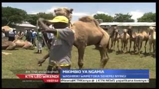 KTN Leo Wikendi 27th August 2016 - Hafla Ya Mikimbio Ya Ngamia Mjini Samburu