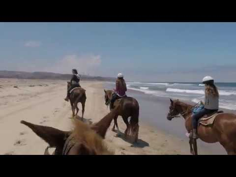 Riding horses on the beach in San Diego